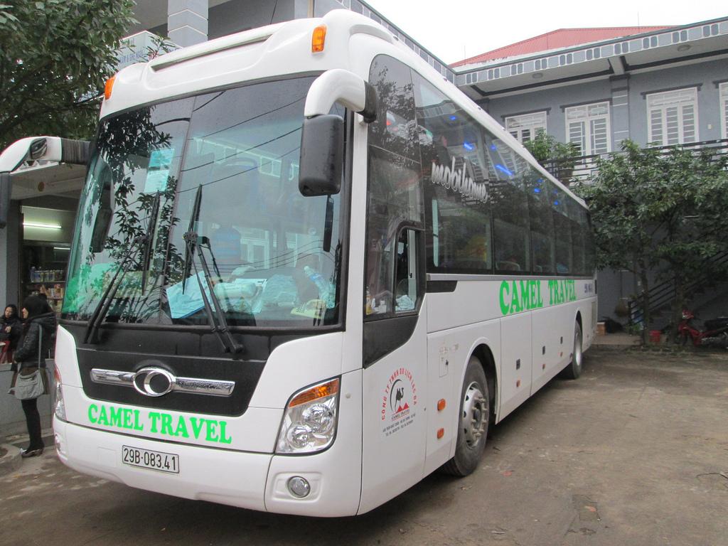 Xe open bus Camel